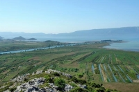 ENVI - Dubravka Šuica at the Committee on the Environment, Public Health and Food Safety on the Neretva River delta